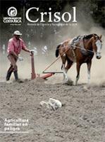 Revista Crisol Edición # 19