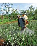 Revista Crisol Edición # 24